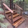 Redwood Stairway